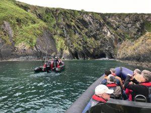 Ocean Escapes Cork